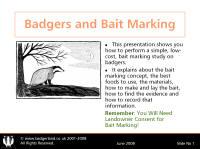 the bait of satan study guide pdf