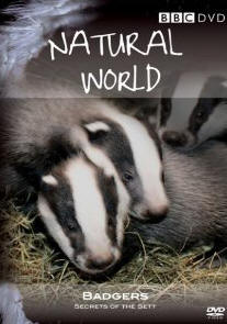 Natural World - Badgers Secrets Of The Sett [DVD]